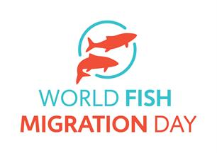 World Fish Migration Day Rijnland en AGV